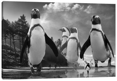 Walk Of The Penguins Canvas Art Print