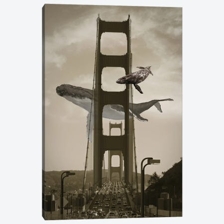 Whale Watching From The Golden Gate Birdge Canvas Print #DLB99} by David Loblaw Canvas Artwork