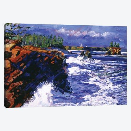 Jagged Coastline Canvas Print #DLG100} by David Lloyd Glover Canvas Artwork