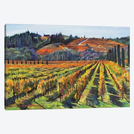 Napa Cabernet Harvest Canvas Print #DLG121} by David Lloyd Glover Canvas Wall Art