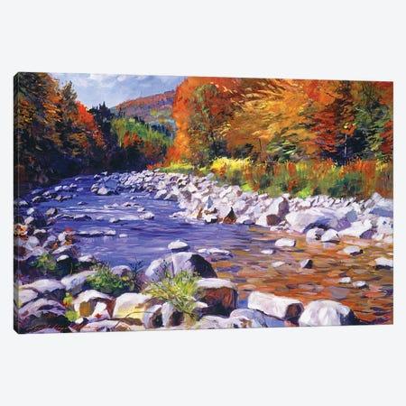 October River Run Canvas Print #DLG126} by David Lloyd Glover Canvas Art Print