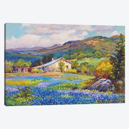 Old Texas Ranch Canvas Print #DLG129} by David Lloyd Glover Canvas Wall Art