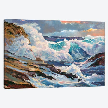 Pacific Storm Canvas Print #DLG132} by David Lloyd Glover Art Print