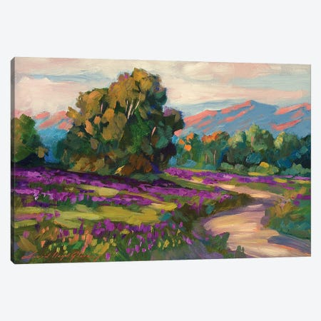 Purple Hills Of California Canvas Print #DLG142} by David Lloyd Glover Canvas Art