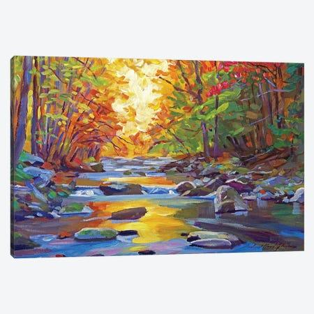 Gentle Stream Canvas Print #DLG144} by David Lloyd Glover Art Print