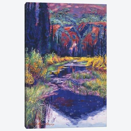 Raindrop Pond Canvas Print #DLG145} by David Lloyd Glover Canvas Print