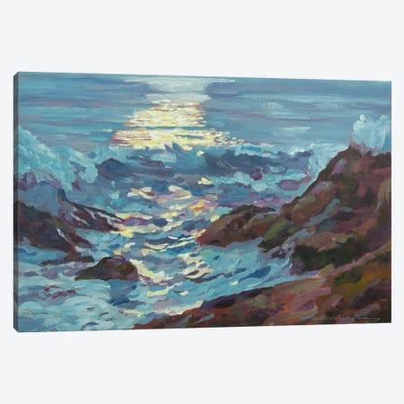 Silver Moonlight Canvas Print #DLG159} by David Lloyd Glover Canvas Art Print