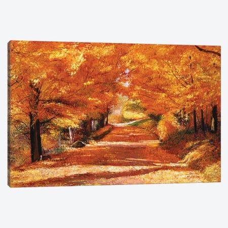 The Yellow Leaf Road Canvas Print #DLG15} by David Lloyd Glover Canvas Wall Art