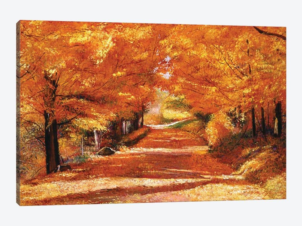 The Yellow Leaf Road by David Lloyd Glover 1-piece Canvas Print