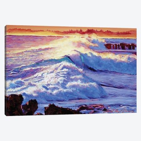 Rolling Ocean Surf Canvas Print #DLG164} by David Lloyd Glover Canvas Art Print