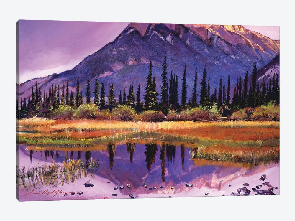 Soft Shades Of Reflections by David Lloyd Glover 1-piece Canvas Print