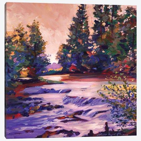 Spring Runoff Canvas Print #DLG177} by David Lloyd Glover Canvas Wall Art