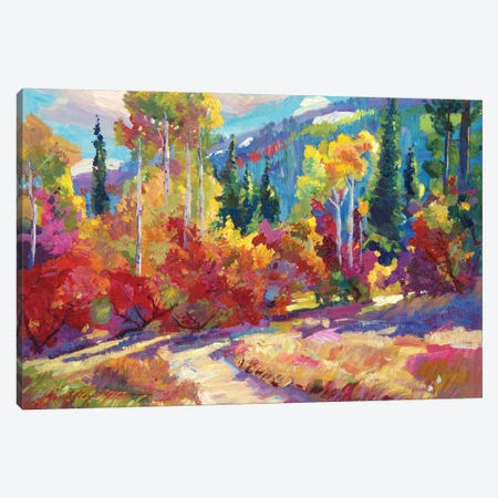 The Colors Of New Hampshire Canvas Print #DLG191} by David Lloyd Glover Art Print