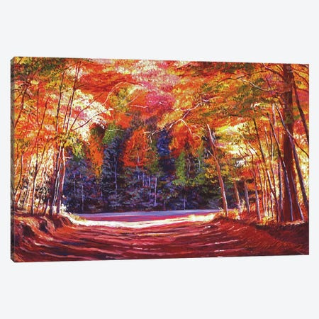 The End Of The Road Canvas Print #DLG197} by David Lloyd Glover Canvas Artwork