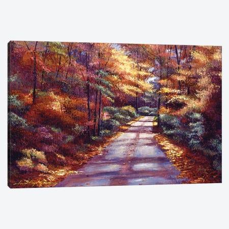 The Glory Of Autumn Canvas Print #DLG198} by David Lloyd Glover Canvas Art Print