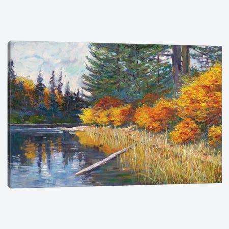 Lakes Edge Canvas Print #DLG199} by David Lloyd Glover Canvas Art Print