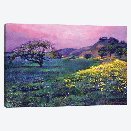 Wildflower Fields Canvas Print #DLG21} by David Lloyd Glover Canvas Wall Art