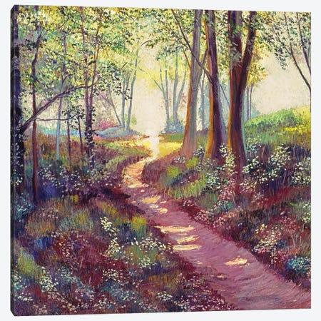 Wildflowers Along The Path Canvas Print #DLG223} by David Lloyd Glover Canvas Print