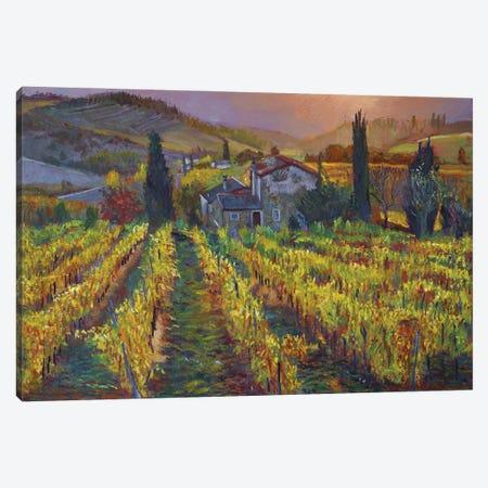 Tuscan Vineyard Harvest Canvas Print #DLG232} by David Lloyd Glover Canvas Wall Art