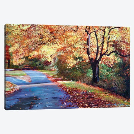 A Fork In The Road Canvas Print #DLG31} by David Lloyd Glover Canvas Print
