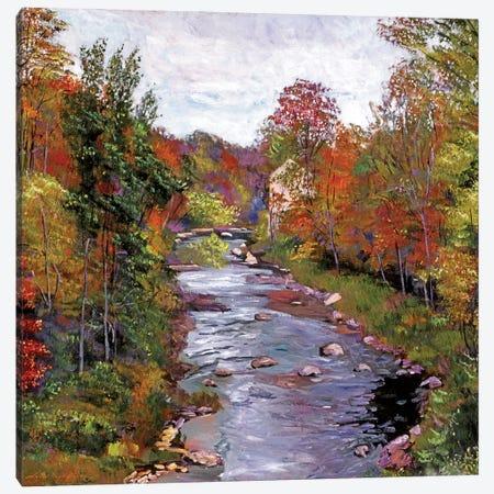 Autumn Days At The River Canvas Print #DLG41} by David Lloyd Glover Canvas Artwork