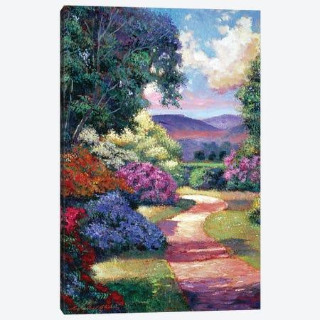 Azalea Spring Pathway Canvas Print #DLG51} by David Lloyd Glover Art Print