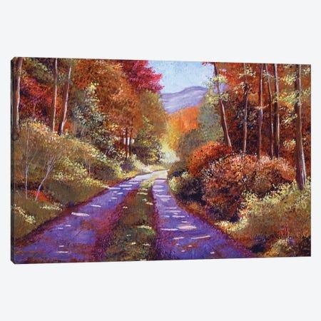 Country Roads Canvas Print #DLG5} by David Lloyd Glover Canvas Artwork