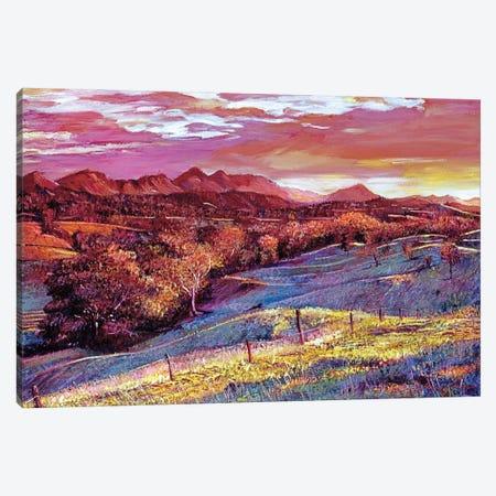 California Dreaming Canvas Print #DLG63} by David Lloyd Glover Canvas Art