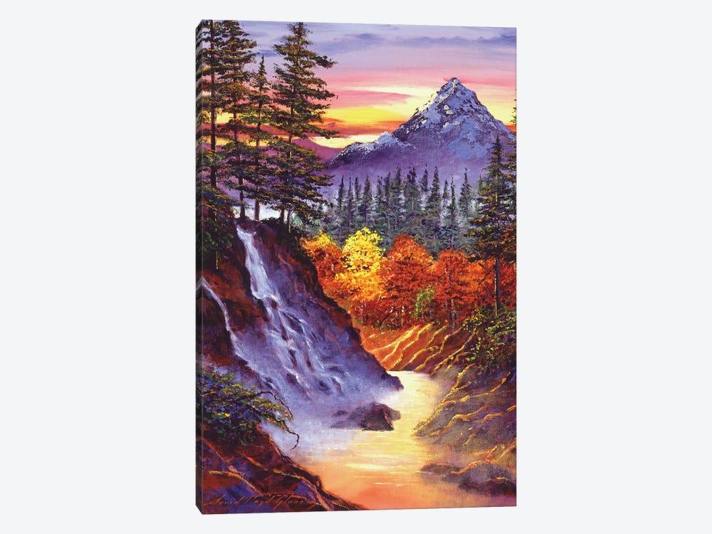 Deep Canyon Falls by David Lloyd Glover 1-piece Canvas Wall Art