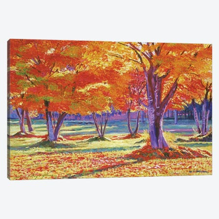Fallen Autumn Leaves Canvas Print #DLG80} by David Lloyd Glover Canvas Art