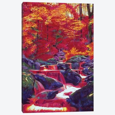 Fire Fall Canvas Print #DLG82} by David Lloyd Glover Canvas Artwork