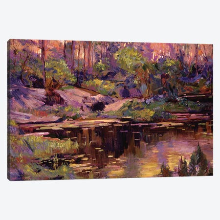 Golden Hour At The Pond Canvas Print #DLG93} by David Lloyd Glover Canvas Art Print