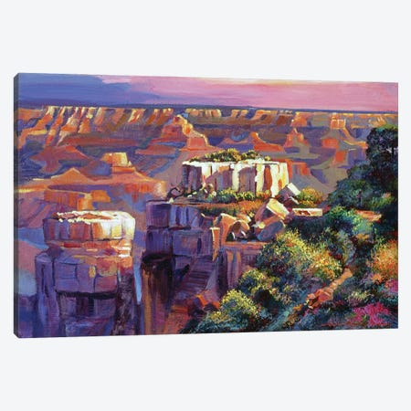 Grand Canyon Morning Canvas Print #DLG96} by David Lloyd Glover Canvas Art