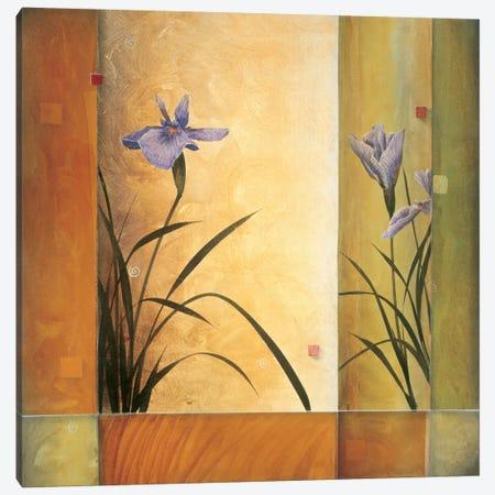 Terra Cotta Garden Canvas Print #DLL109} by Don Li-Leger Canvas Art Print