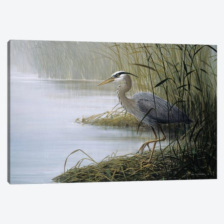 Watching And Waiting Canvas Print #DLL119} by Don Li-Leger Canvas Wall Art