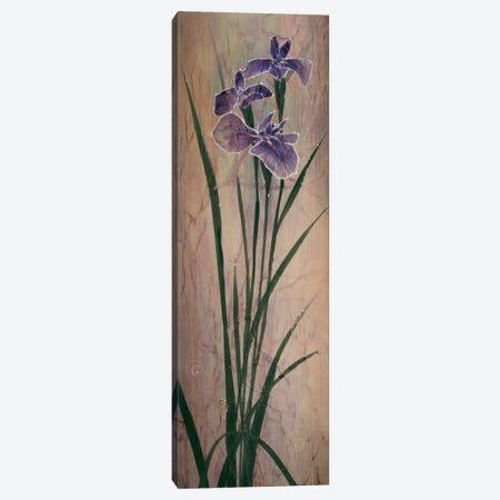 Iris Panel I Canvas Print #DLL123} by Don Li-Leger Canvas Print