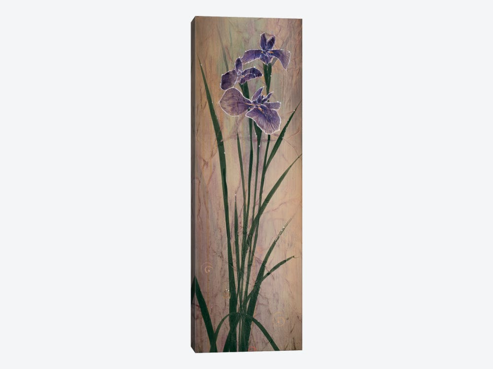 Iris Panel I by Don Li-Leger 1-piece Canvas Artwork