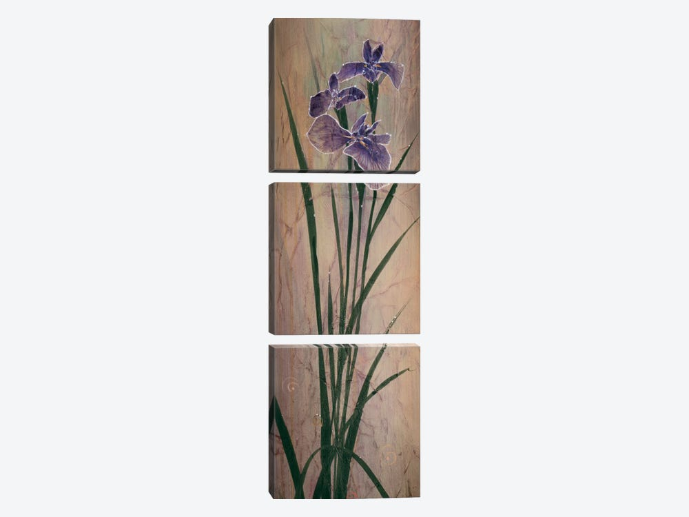 Iris Panel I by Don Li-Leger 3-piece Canvas Wall Art