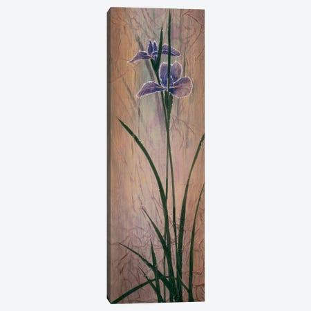 Iris Panel II Canvas Print #DLL124} by Don Li-Leger Canvas Artwork