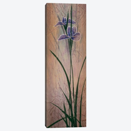Iris Panel II Canvas Print #DLL124} by Don Li-Leger Canvas Artwork