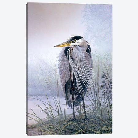 Brooding Heron Canvas Print #DLL125} by Don Li-Leger Canvas Artwork