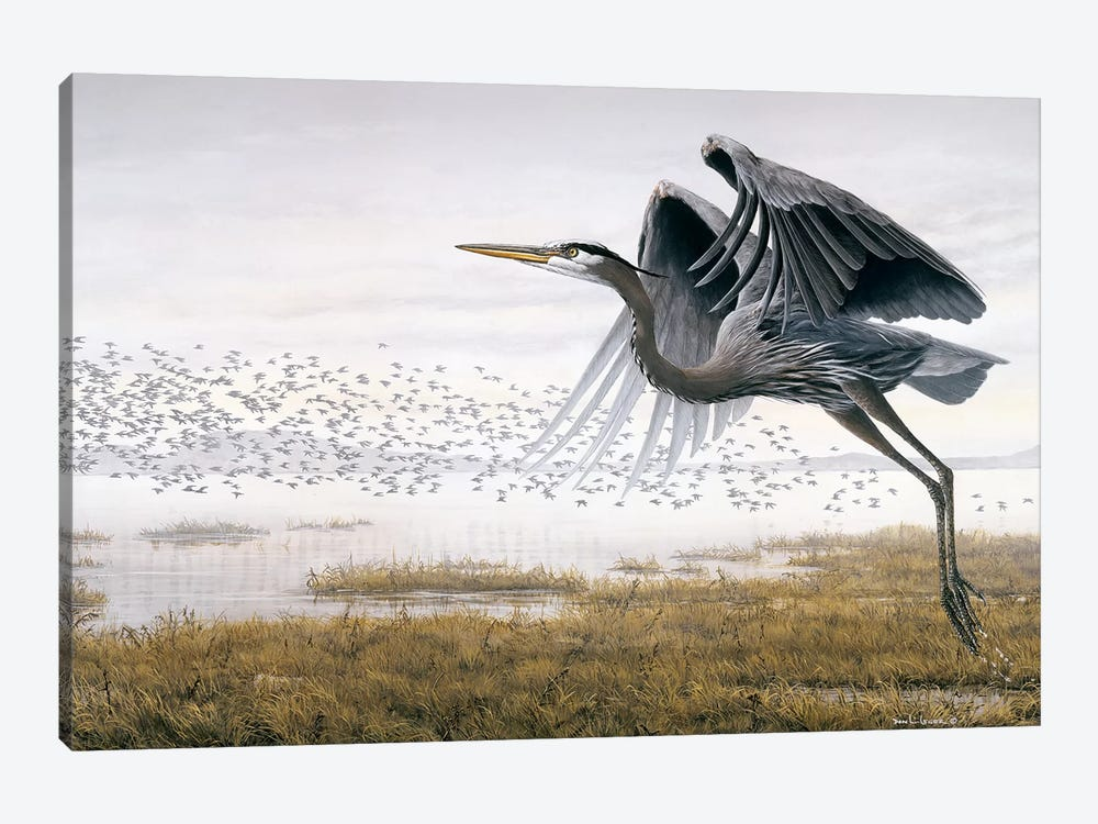 Heron Sandpipers by Don Li-Leger 1-piece Art Print