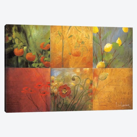Citrus Garden Canvas Print #DLL16} by Don Li-Leger Canvas Print