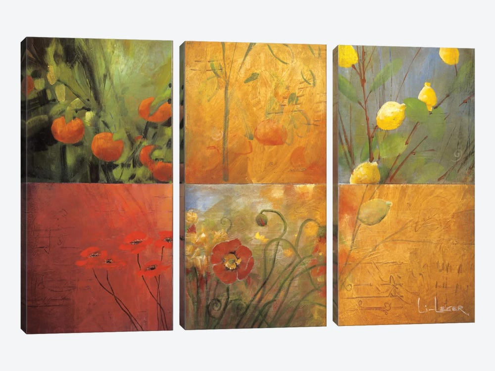 Citrus Garden by Don Li-Leger 3-piece Canvas Art Print