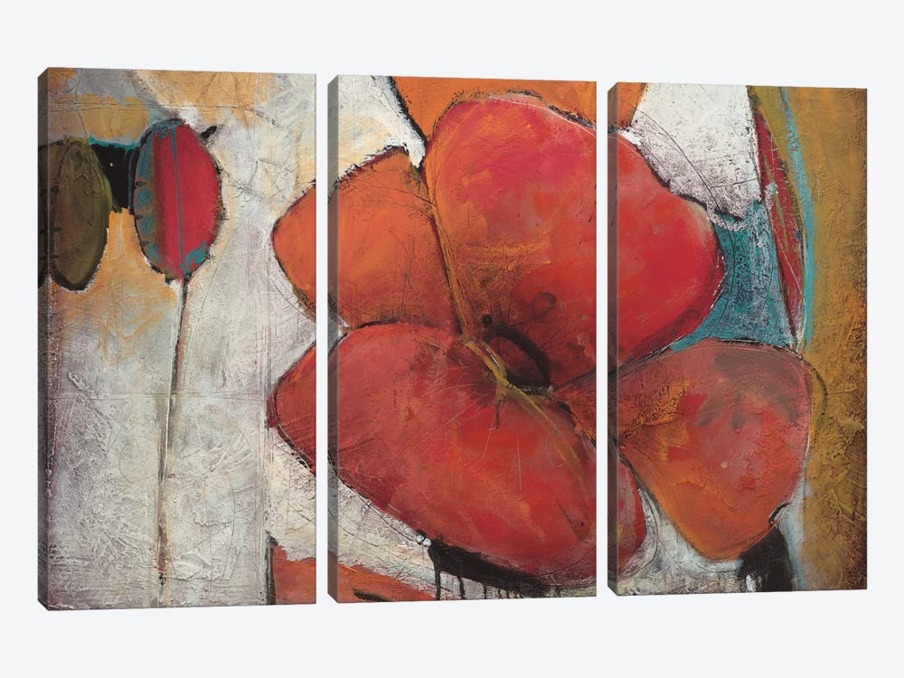 Full Blossom I by Don Li-Leger 3-piece Canvas Art