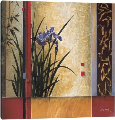 Garden Gateway Canvas Print #DLL29