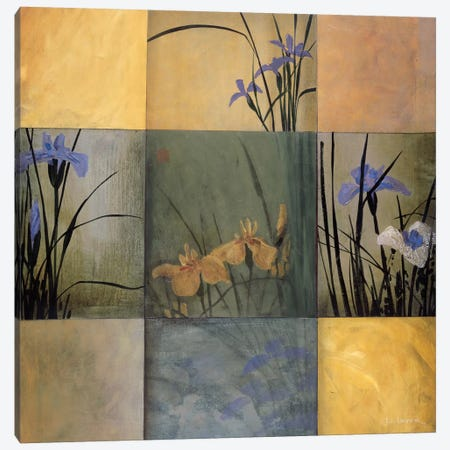 Iris Nine Patch Canvas Print #DLL47} by Don Li-Leger Canvas Art
