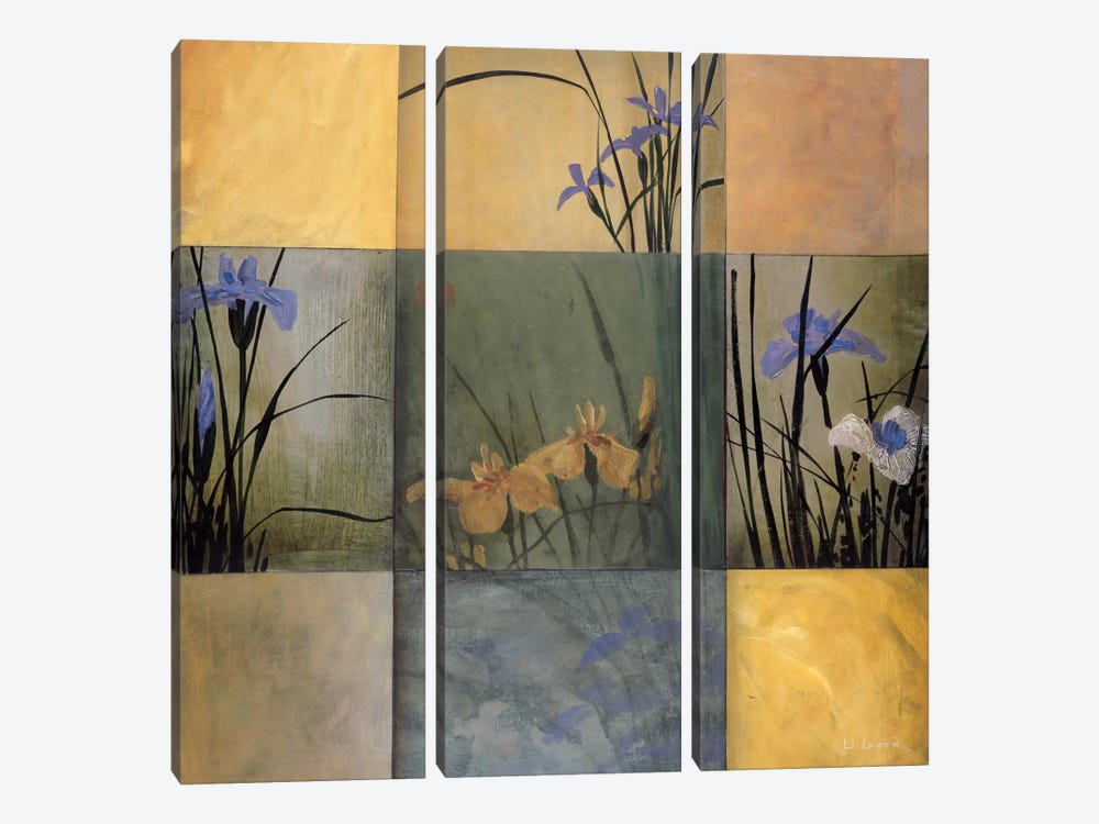 Iris Nine Patch by Don Li-Leger 3-piece Canvas Print