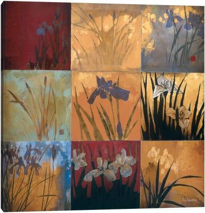 Iris Nine Patch II Canvas Art Print