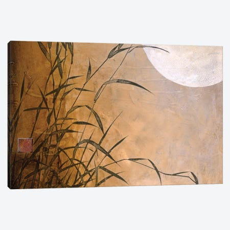 Lakeside Moonrise Canvas Print #DLL53} by Don Li-Leger Canvas Art